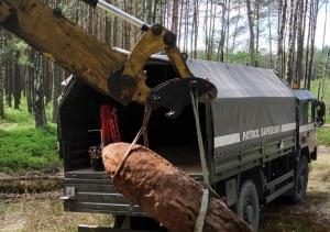 Kilka dni wywożono niewybuchy z lasu pod Mińskiem Mazowieckim