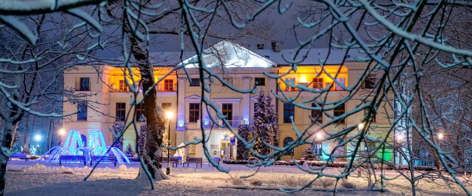Zimowy park miejski - galeria zdjęć